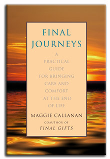 Final Journeys cover